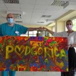 Slika Podgorice od danas krasi enterijer Instituta za bolesti djece KCCG